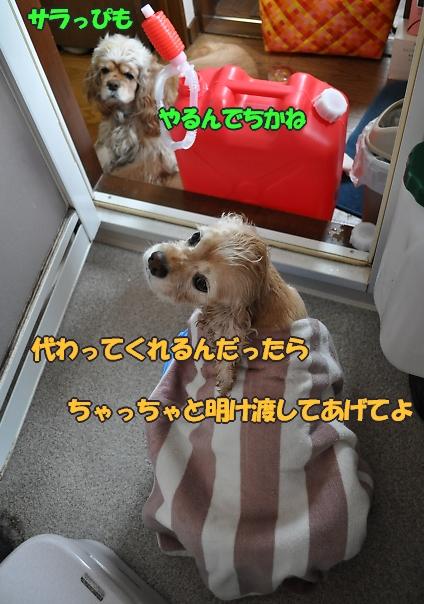 b0067012_0213886.jpg