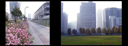 11月初東京行—樂器展篇_d0187917_124118.jpg