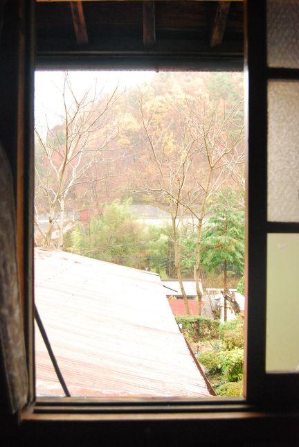 潤いの雨です。_e0015223_14531870.jpg