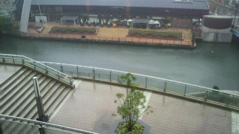 ☆雨…のハッチ♪。。_a0120325_131954100.jpg