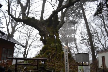 熊野皇大神社_e0228938_22594960.jpg