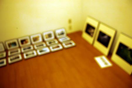 明日より企画展「嗚呼!フォビオン!」。_e0158242_23574127.jpg