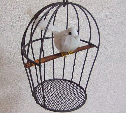 鳥かご_e0256147_1758147.jpg