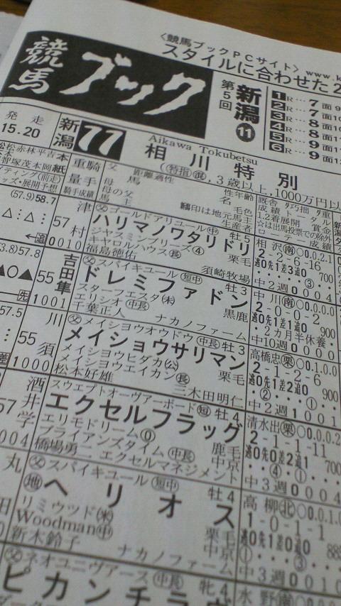 今日の新潟11レース_c0001670_10454648.jpg