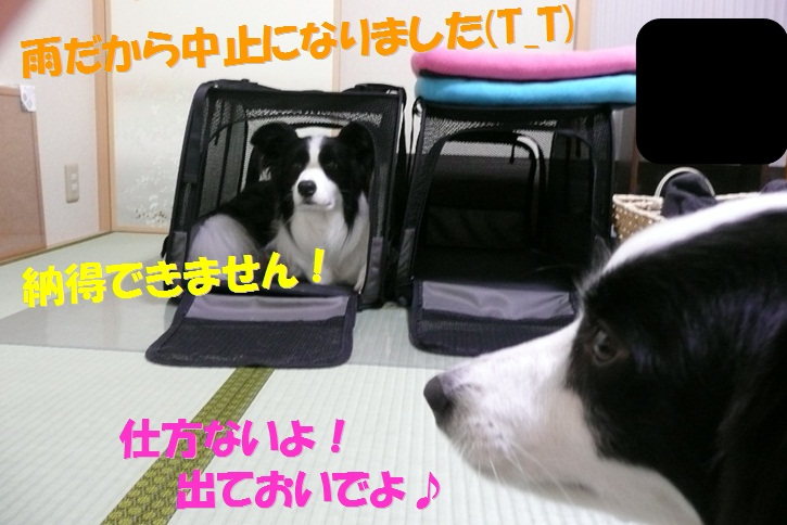 c0147241_2141189.jpg