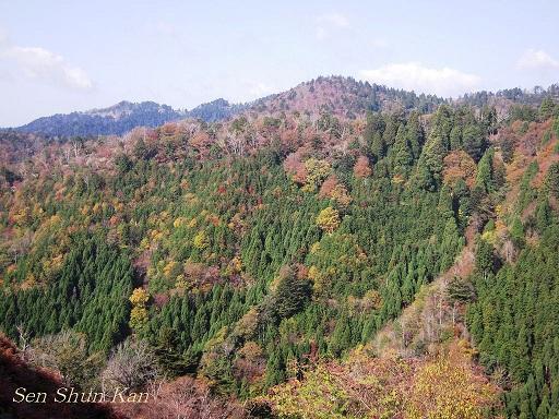 京都 北山の秋 2011年_a0164068_181133.jpg