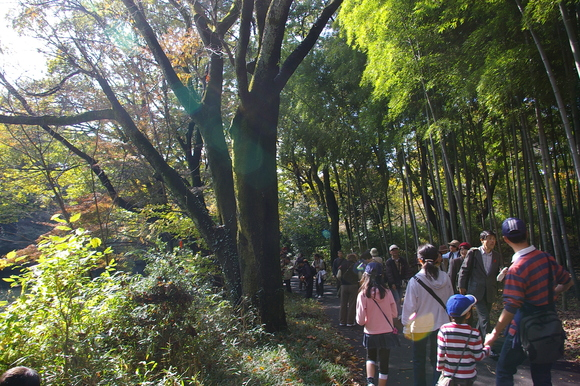 日立中央研究所庭園開放日/Open day of Hitachi Garden_a0186568_20201928.jpg