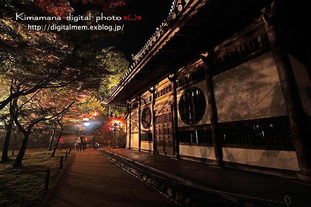 宝福寺ライトアップ Scene2_c0083985_1713438.jpg