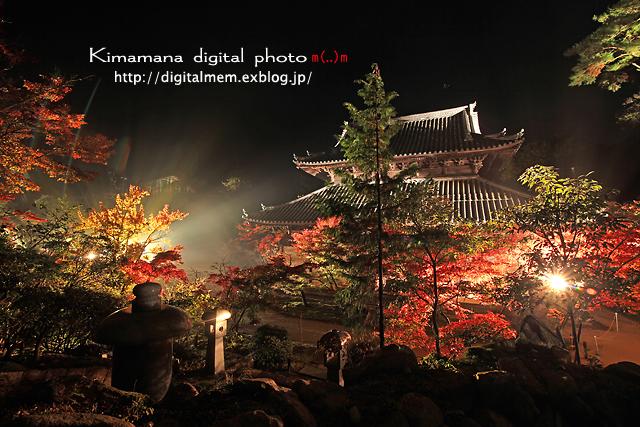 宝福寺ライトアップ Scene2_c0083985_17141216.jpg