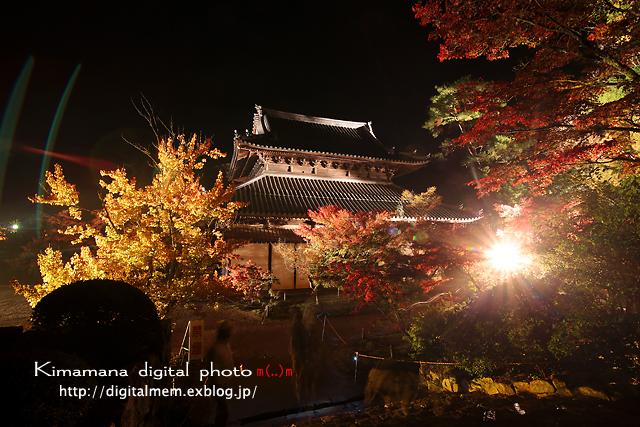 宝福寺ライトアップ Scene2_c0083985_17143316.jpg