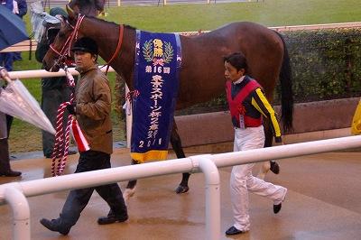 不良馬場も問題なしの圧勝!東京スポーツ杯2歳Sはディープブリランテが2連勝で重賞初制覇_b0015386_0252979.jpg