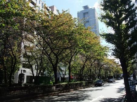 秋色茶荘_b0151300_12461459.jpg