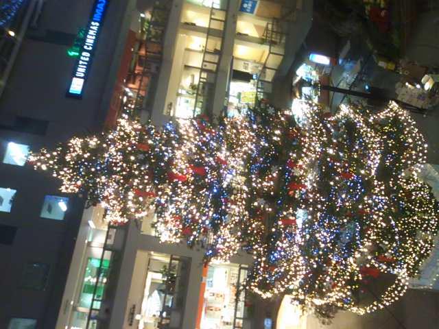 もうすぐクリスマス_b0127002_18571275.jpg