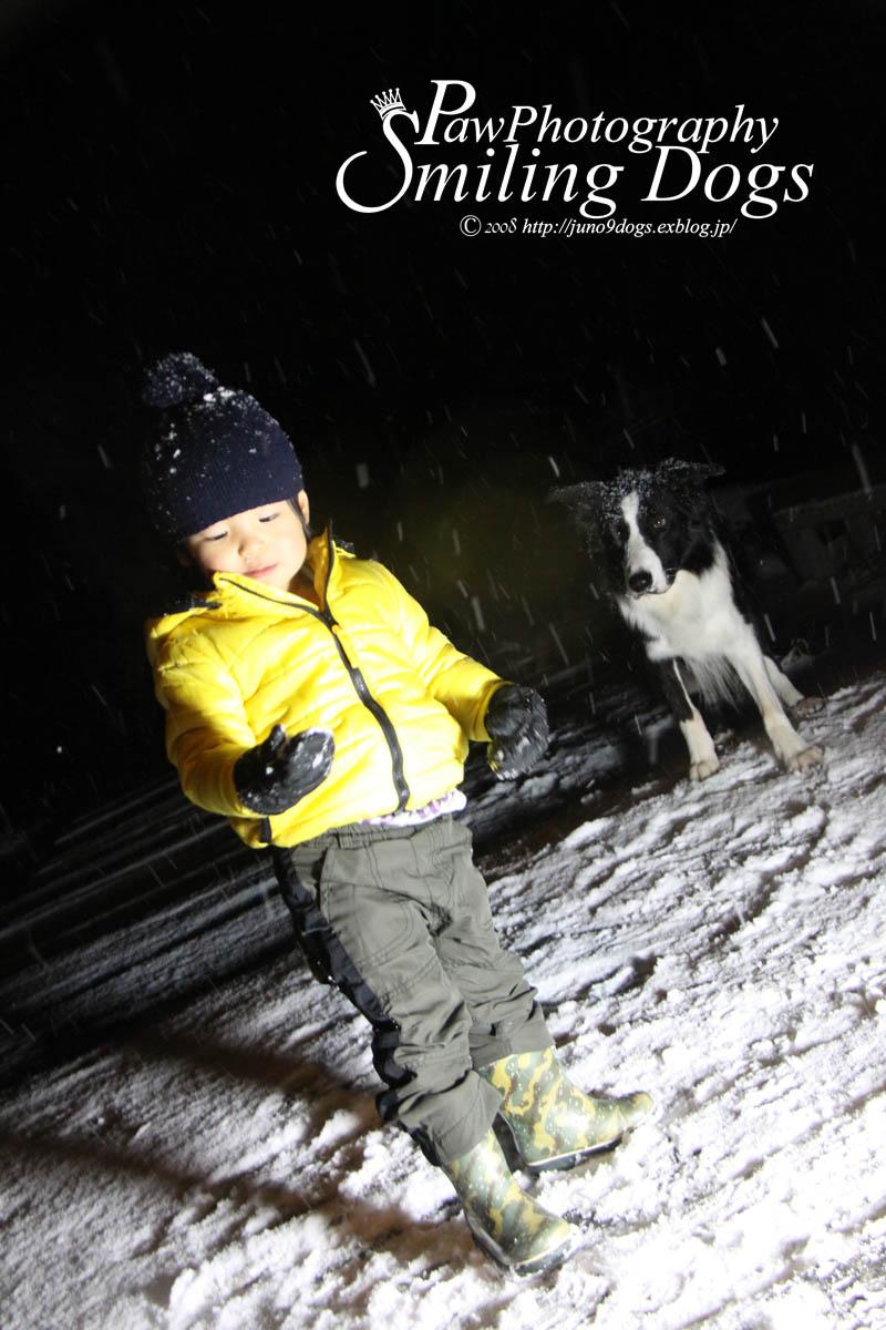 犬と子供は元気です!_f0116805_1715522.jpg