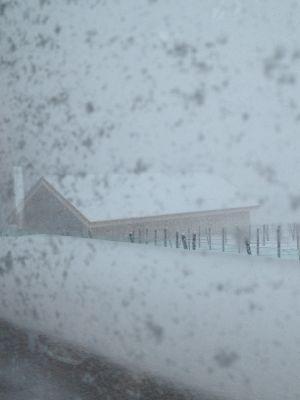 冬が来た。_f0096216_13572464.jpg