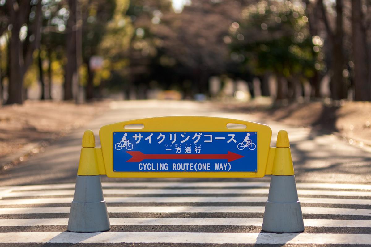 サイクリングコース_b0213320_21475294.jpg