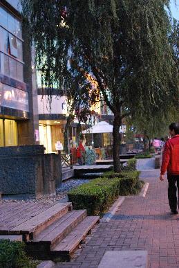 上海ホテル周辺_a0175348_16253547.jpg