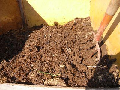 野菜残渣堆肥_c0063348_7273452.jpg