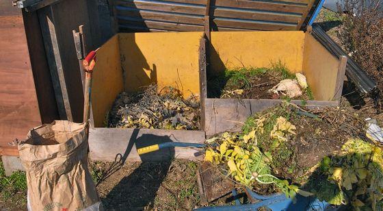 野菜残渣堆肥_c0063348_7273892.jpg