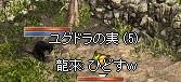 a0201367_0113379.jpg