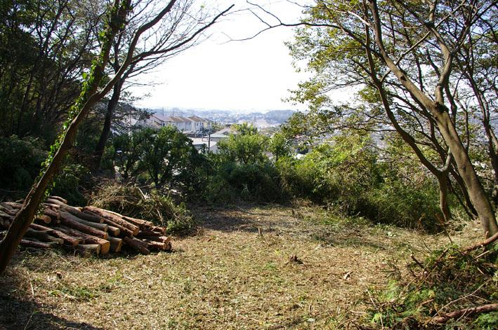 六国見山森林公園に切り倒されたスギがそのまま放置_c0014967_1913473.jpg