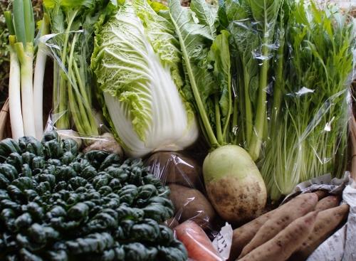 今週の野菜セット(11/22~11/26着)_c0110869_2323854.jpg