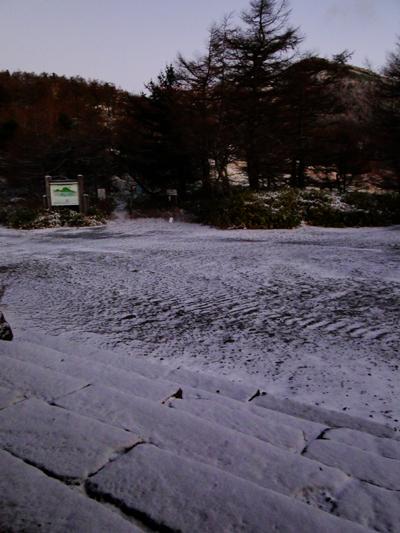 雪降り_e0120896_6442663.jpg