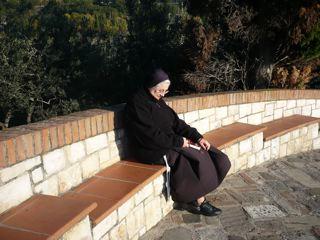 サン・ダミアーノ修道院への道_c0203401_1751582.jpg