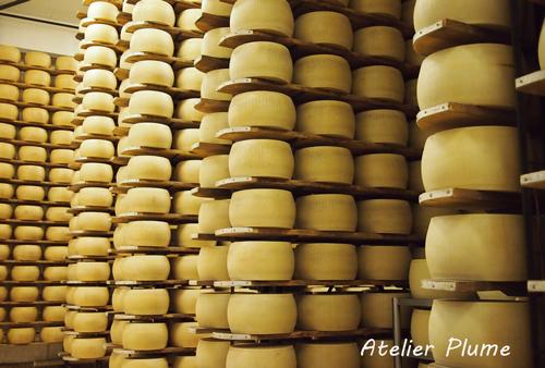 イタリアの旅  パルミジャーノ レッジャーノチーズ工場_e0154202_17463298.jpg