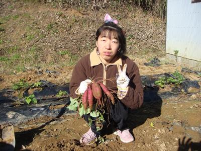 サツマイモ収穫祭☆_a0154110_1154435.jpg