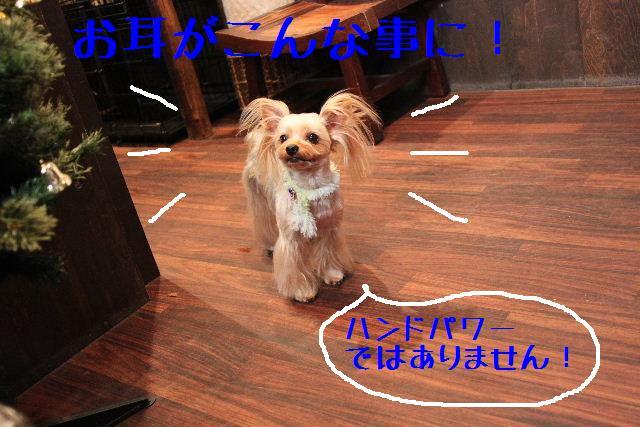b0130018_13385796.jpg