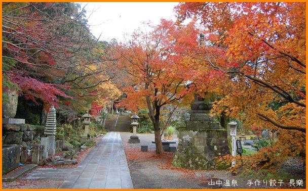 山中温泉 今日の紅葉の巻_a0041925_23122550.jpg