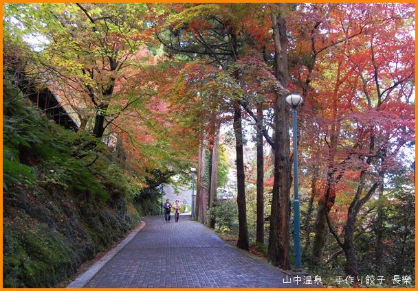 山中温泉 今日の紅葉の巻_a0041925_2313545.jpg