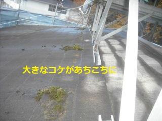 f0031037_2251137.jpg