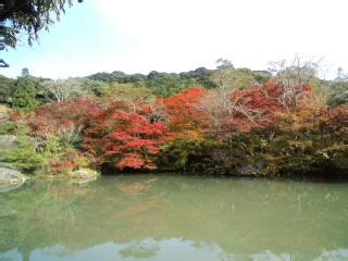 御船山〜到着!!池のほとりの紅葉…キレイです。五分〜くらいです!!_d0082356_1458927.jpg