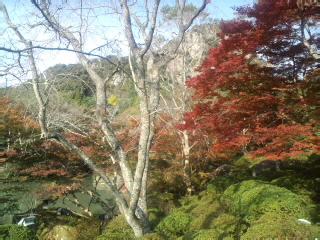 御船山〜到着!!池のほとりの紅葉…キレイです。五分〜くらいです!!_d0082356_145896.jpg