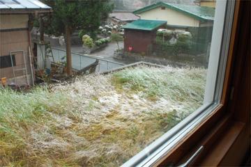 雪の朝_c0181457_5215612.jpg