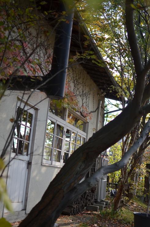 奈良。_b0079897_22453792.jpg