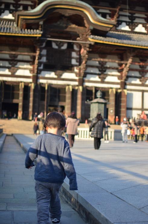奈良。_b0079897_2312550.jpg