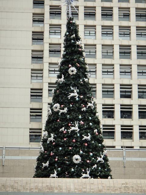 香港はクリスマス一色です_a0152501_19435845.jpg