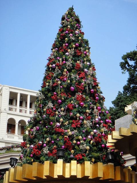 香港はクリスマス一色です_a0152501_19446100.jpg