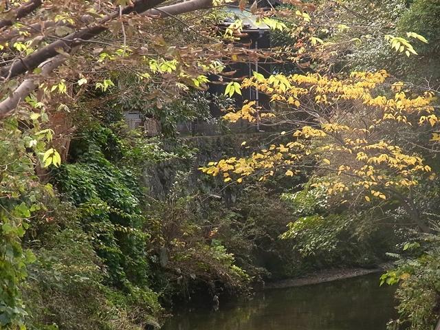 鎌倉にて_c0051102_1910679.jpg