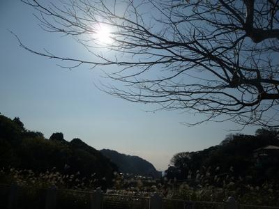 d0150013_16202219.jpg