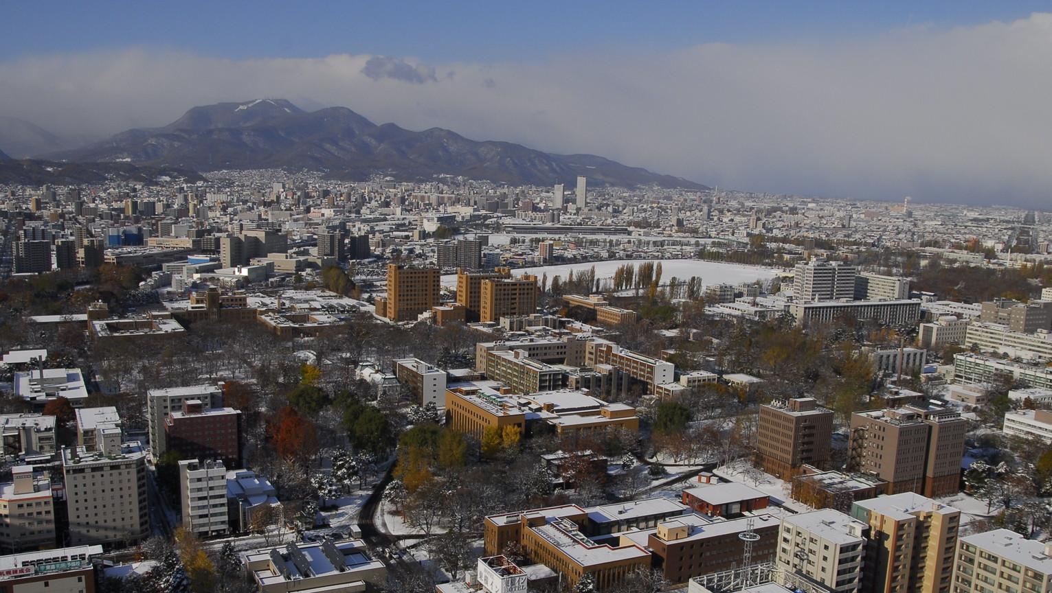 2011年11月 晩秋の北大キャンパス_c0219616_19292126.jpg