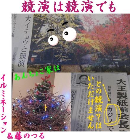 f0175279_755116.jpg