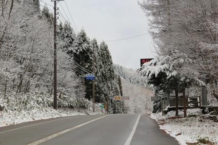 冬の入り口 その2_f0230689_18323238.jpg