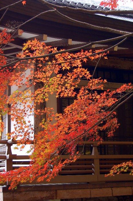 ♪京都~大原三千院♪_c0057390_20432898.jpg
