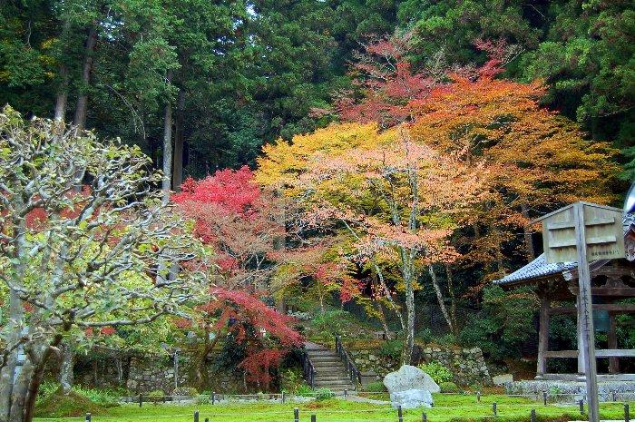 ♪京都~大原三千院♪_c0057390_20471196.jpg