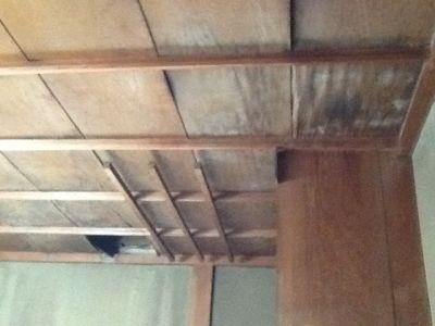 倉庫兼下足室の天井改修_c0124828_553722.jpg