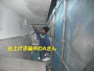 リフォーム3日目_f0031037_19131636.jpg